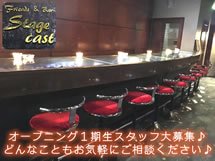 Stage cast(ステージキャスト)